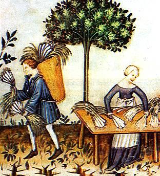medioevo e medicina, la medicina nell'alto medioevo, pag. 20: l